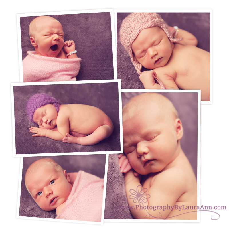 newborn-photography-blogboard-brandy