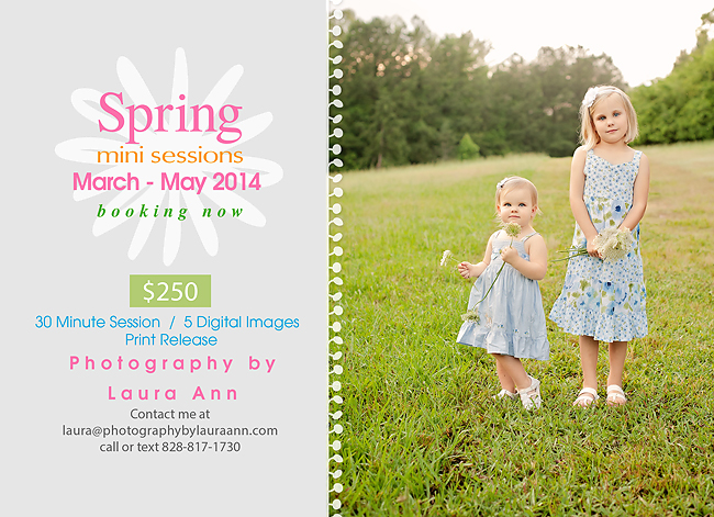 SpringMiniSession2014 web
